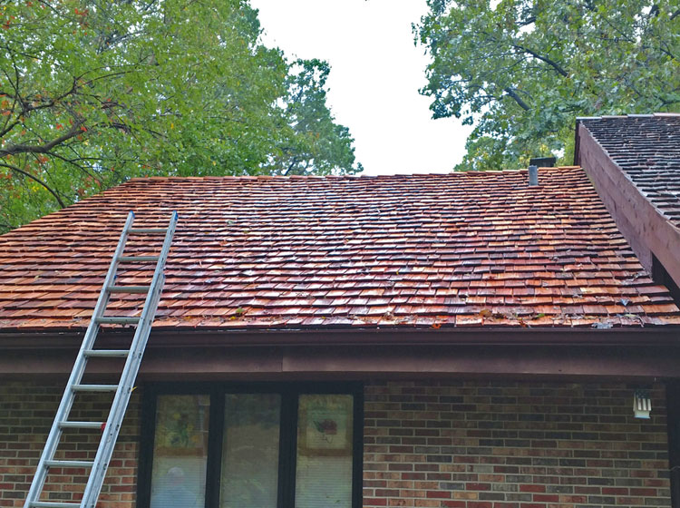 Red shingle roof -