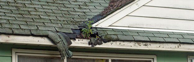 The weather damage to this roof could have been prevented with regular maintenance.
